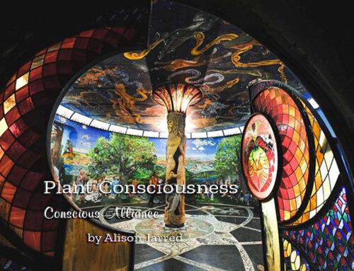 Plant Consciousness – SUPERNAL MAGAZINE